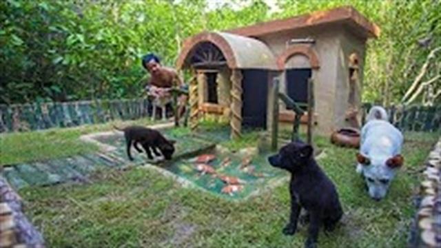 آموزش ساخت ویلایی برای سگها با روش ساده